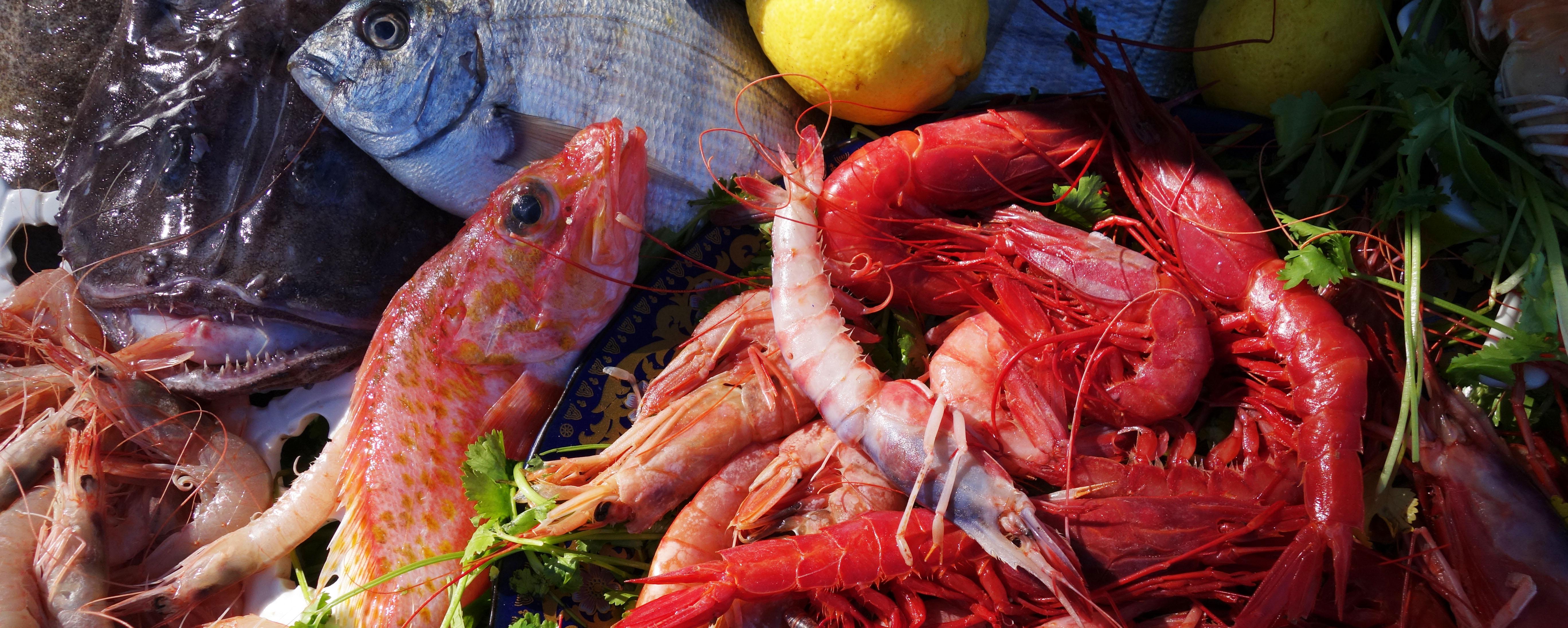 Fisk Essaouira
